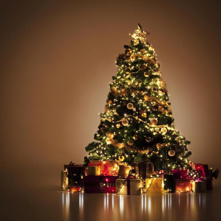 como-reutilizar-un-arbol-de-navidad-1